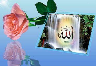 11-islam